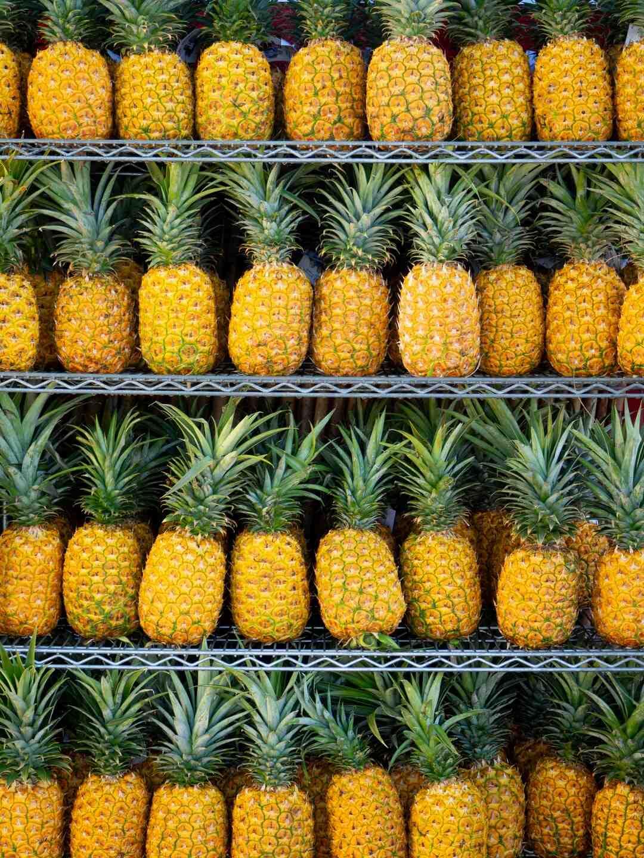 Comment faire sécher les fruits ?