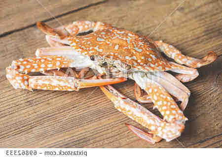 Comment faire bouillir des pinces de crabe